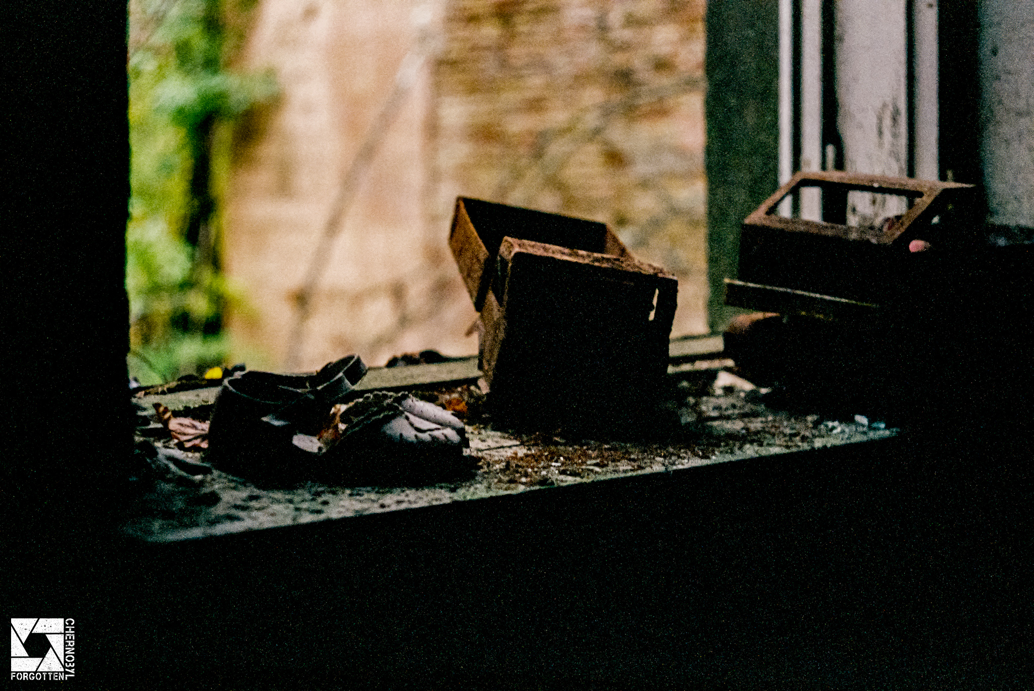 Chernobyl zone captured on film