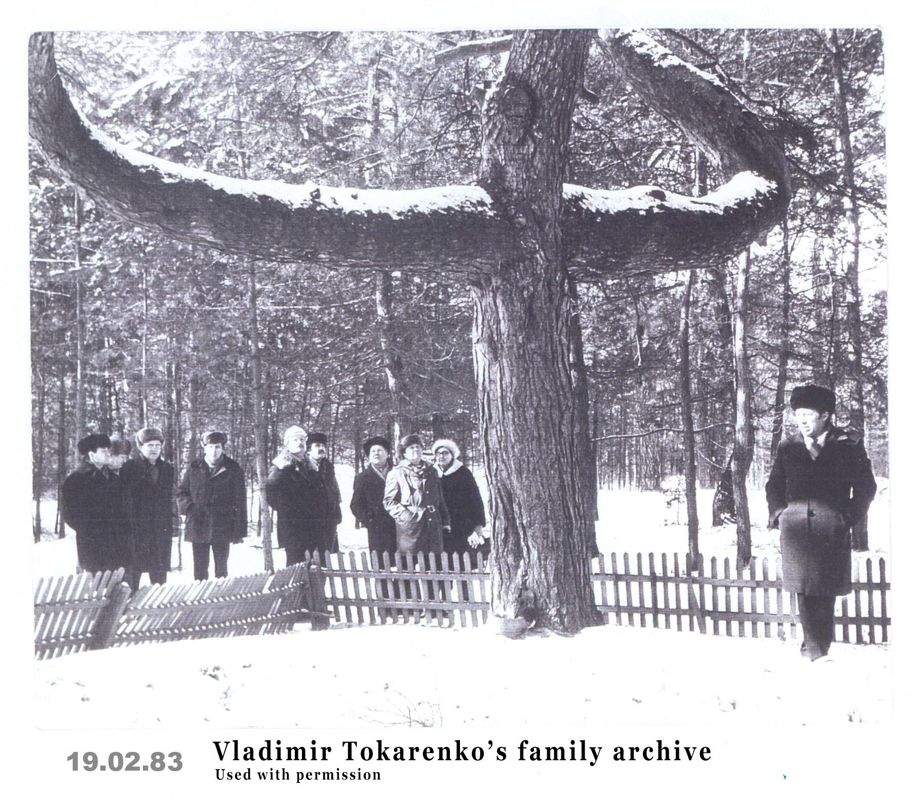 The Chernobyl Pine Cross, from Vladimir Tokarenko's family archive