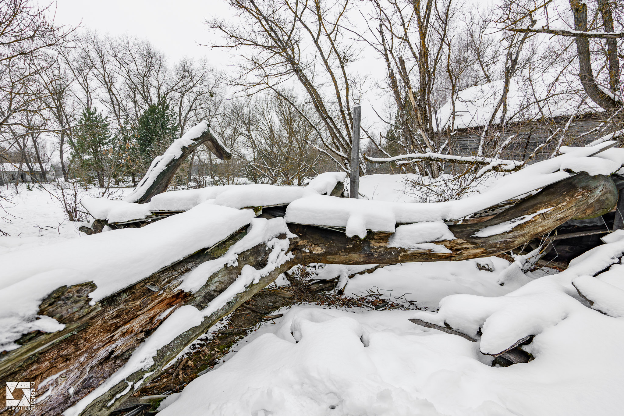 Chernobyl Savior Pine Cross