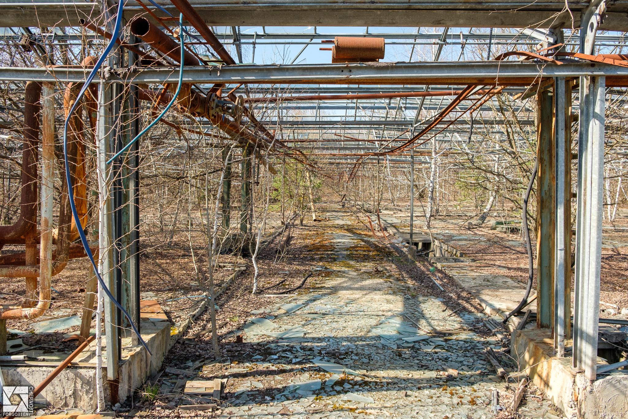 Pripyat Greenhouses